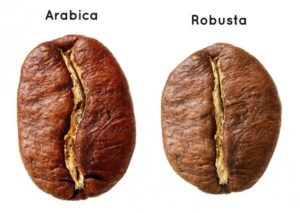 types of coffees