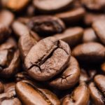 Best Coffee Beans In The World (2019)